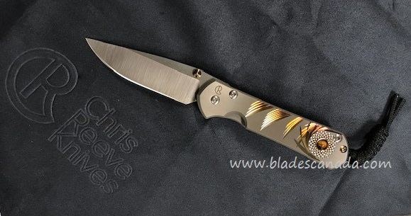 Chris Reeve Small Sebenza 31 Unique Graphic #1 Tiger's Eye