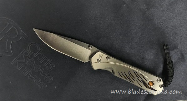 Chris Reeve Small Sebenza 31 Unique Graphic #2 Tiger's Eye