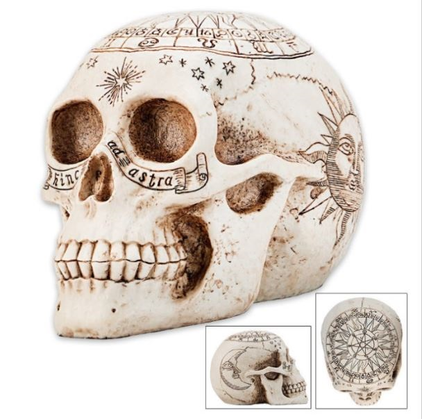 YTC Summit 8448 Astrology Skull