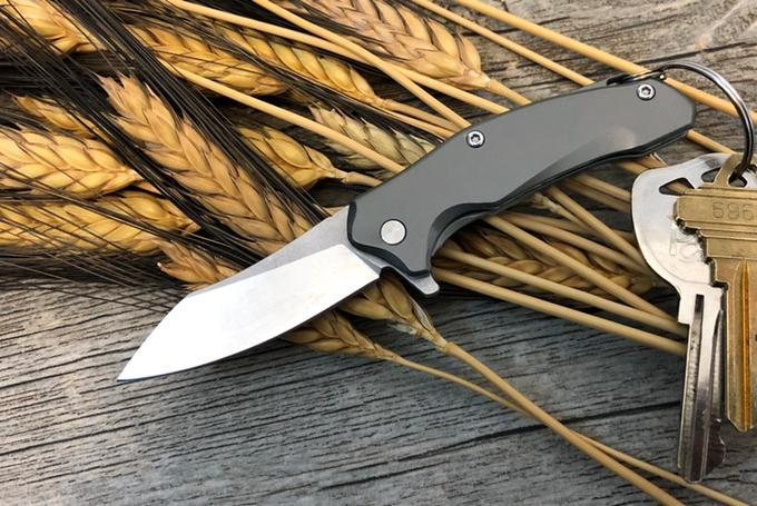 Bastion BRAZA D2 Mini Bro Framelock Folder