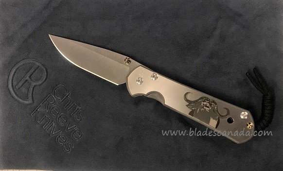 Chris Reeve Large Sebenza 21 - CGG Cape Buffalo