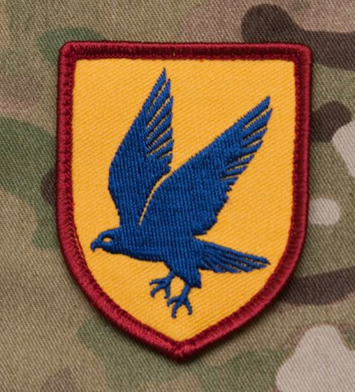 Mil-Spec Monkey Patch - Blue Falcon