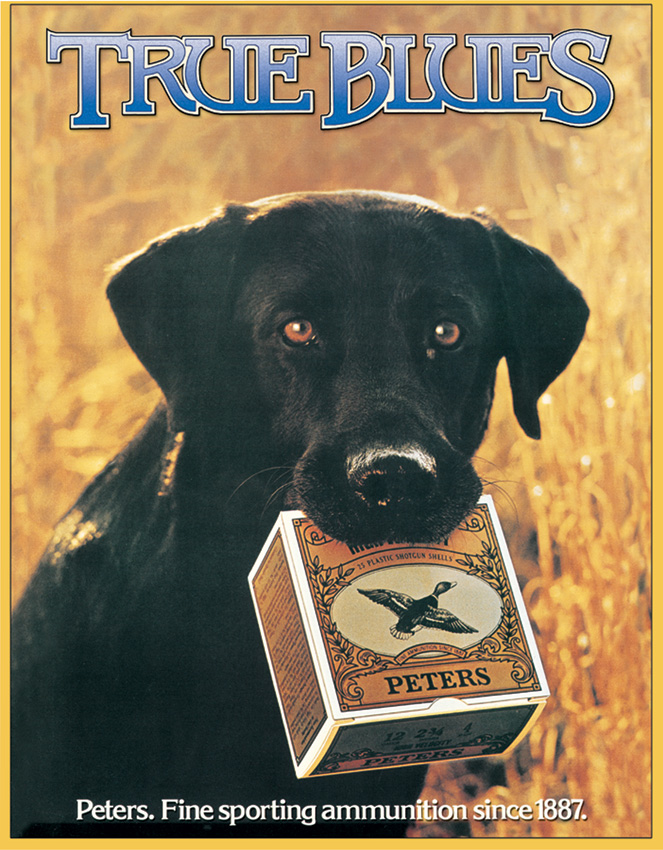 Tin Sign 0928 Peters - True Blue Lab
