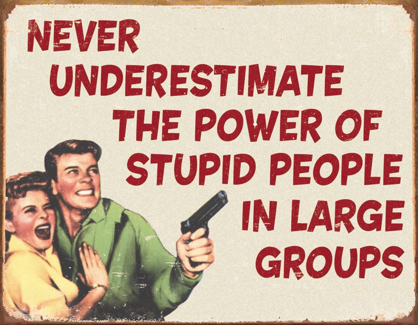 Tin Sign 1553 Stupid People