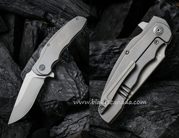 WE Knife Skreech CPM-20CV Titanium Framelock Flipper - Grey SW 2014B